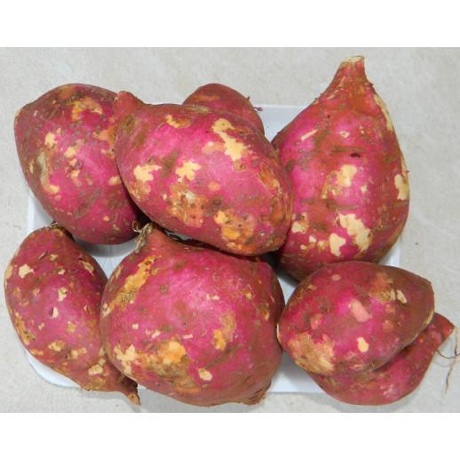 Sweet Potato (lb)