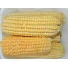 Corn (pack)